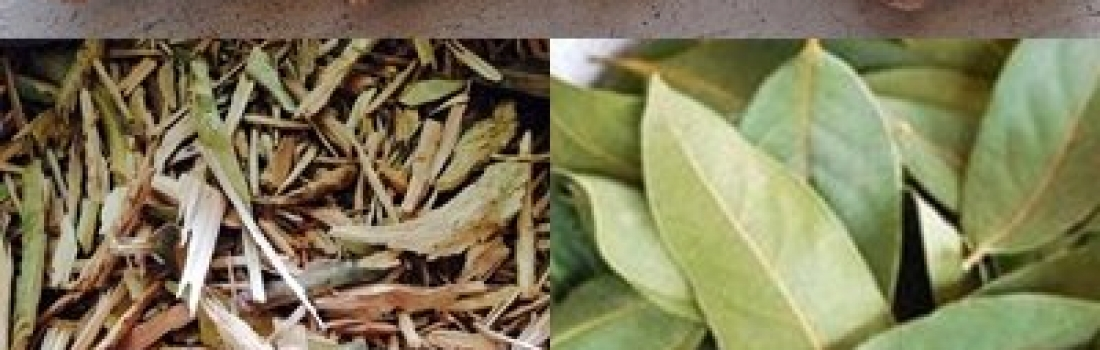 Pimento wood chips, sticks, leaves and more